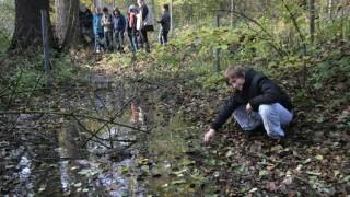Deutschland drängt EU zur Verlängerung der Grenzkontrollen