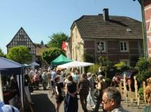 Pferdesportfestival in Allersehl hat begonnen